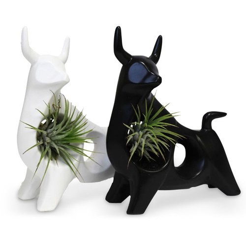 Ox shapped sculpture with air plant