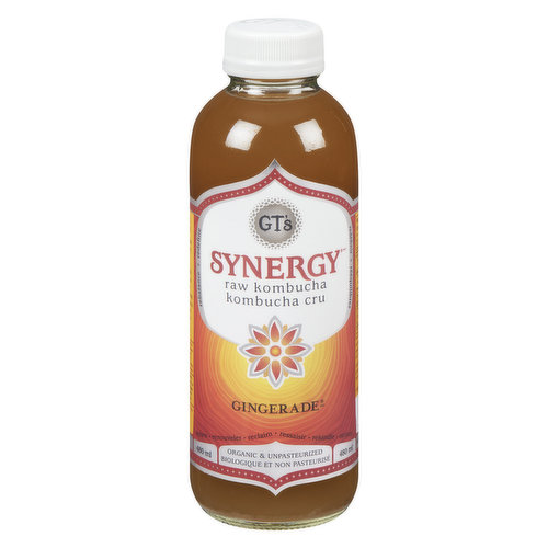Two of nature's superheroes join forces: The healing power of GTs Kombucha and the balancing and cleansing abilities of fresh-pressed ginger juice.