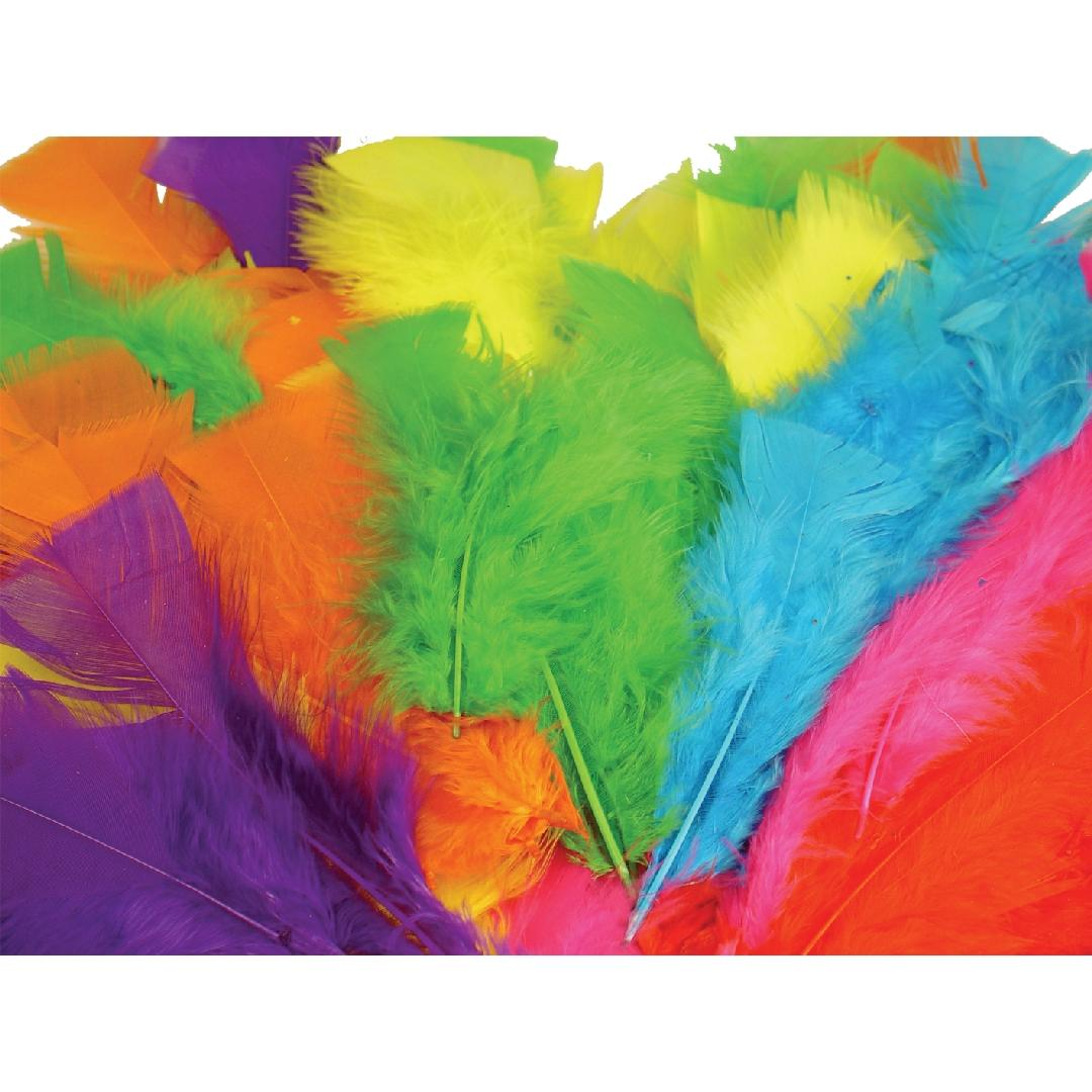 Large Feathers Assorted (30g)