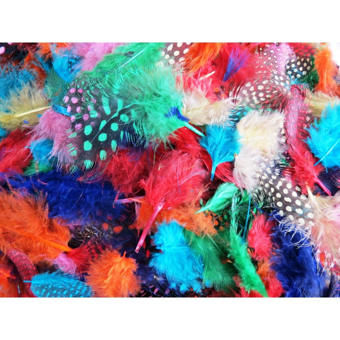 Coloured Spotted Feathers (25g)