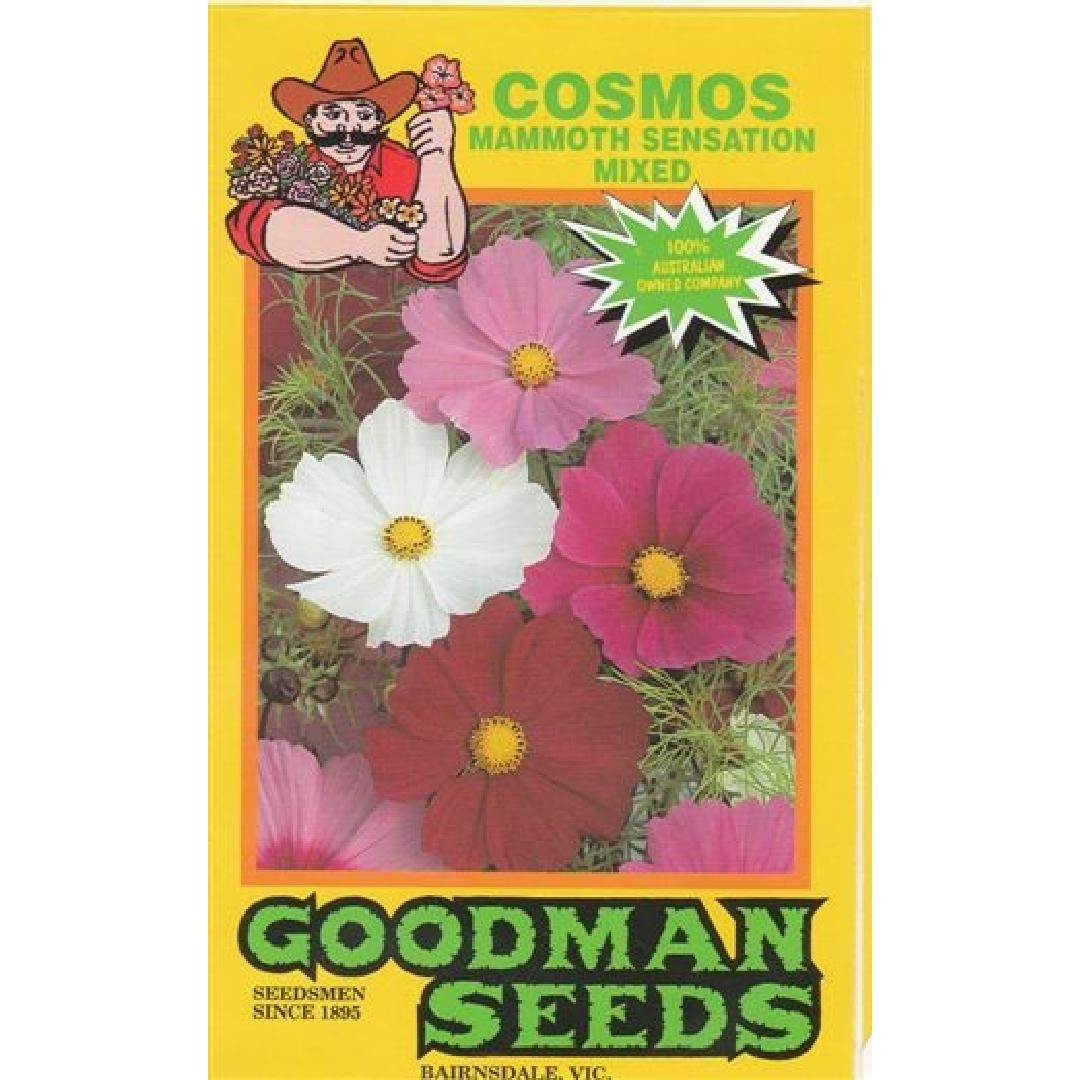 Mixed Flower Seeds