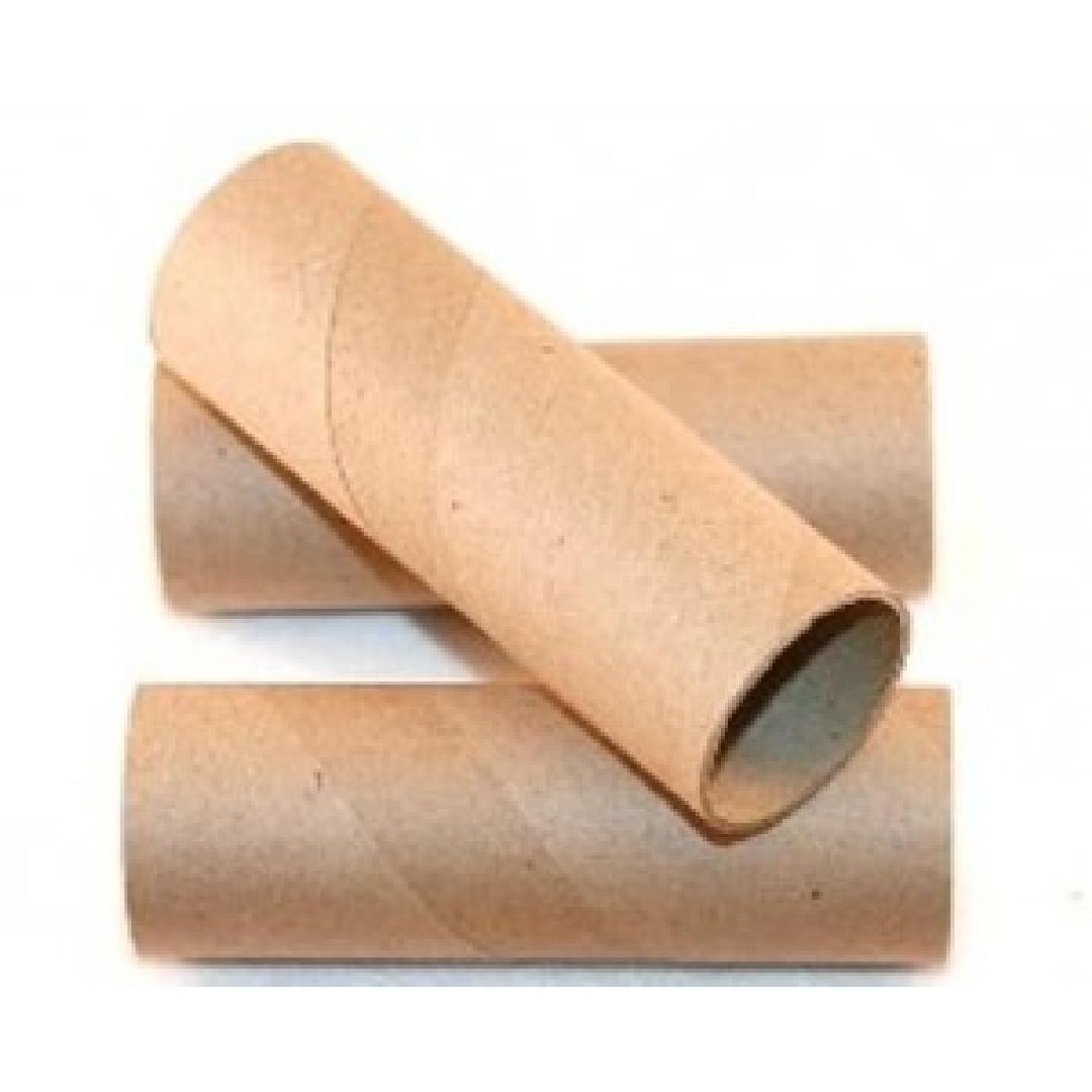 Cardboard Craft Rolls (12pcs)