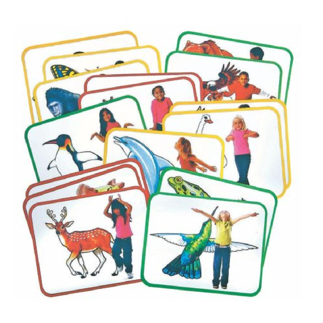 Body Poetry - Animal Action Cards (16pcs)