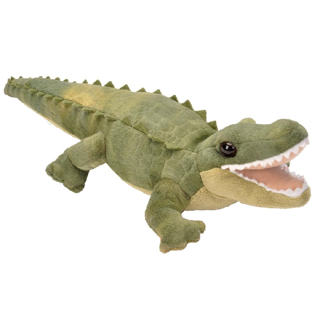 Soft Alligator
