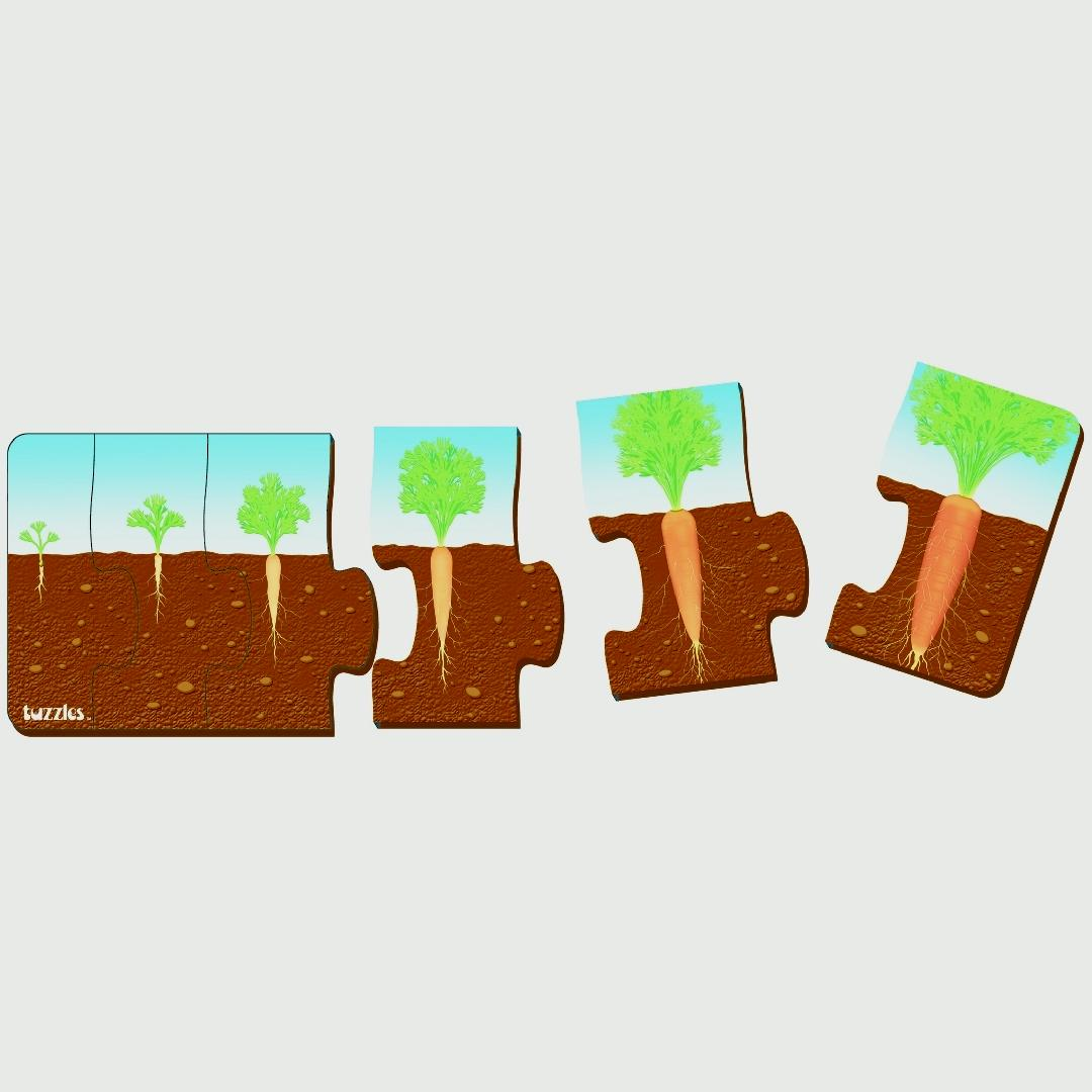 Plant Sequence Puzzle Set of 2 (10pcs)