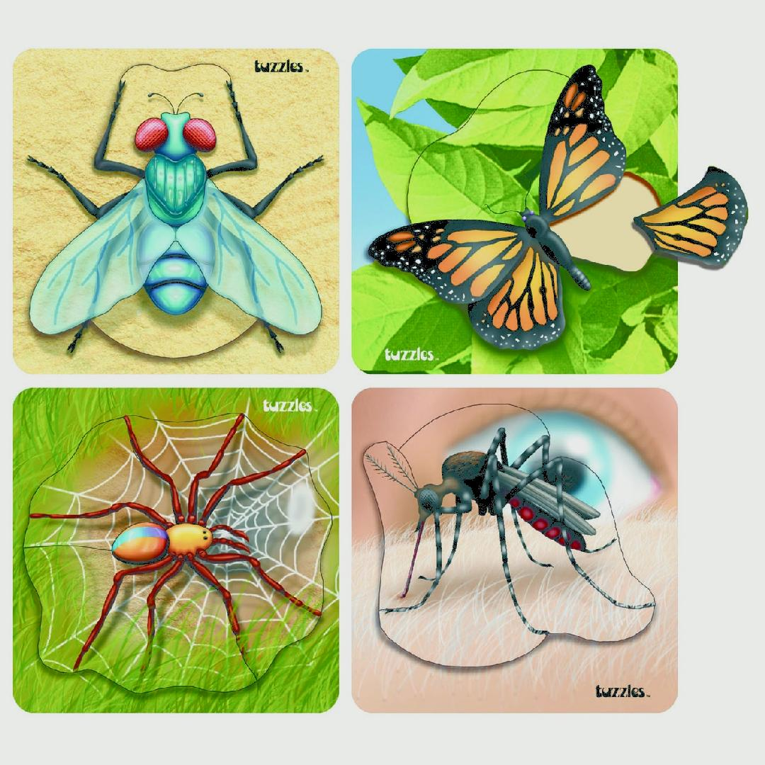 Insect Raised Puzzles (Set of 4)