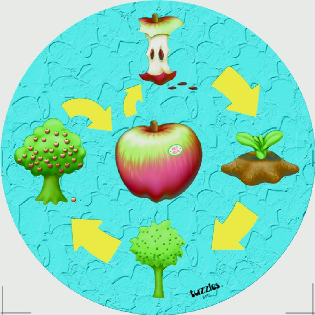 The Apple Life Cycle Raised Puzzle (10pcs)
