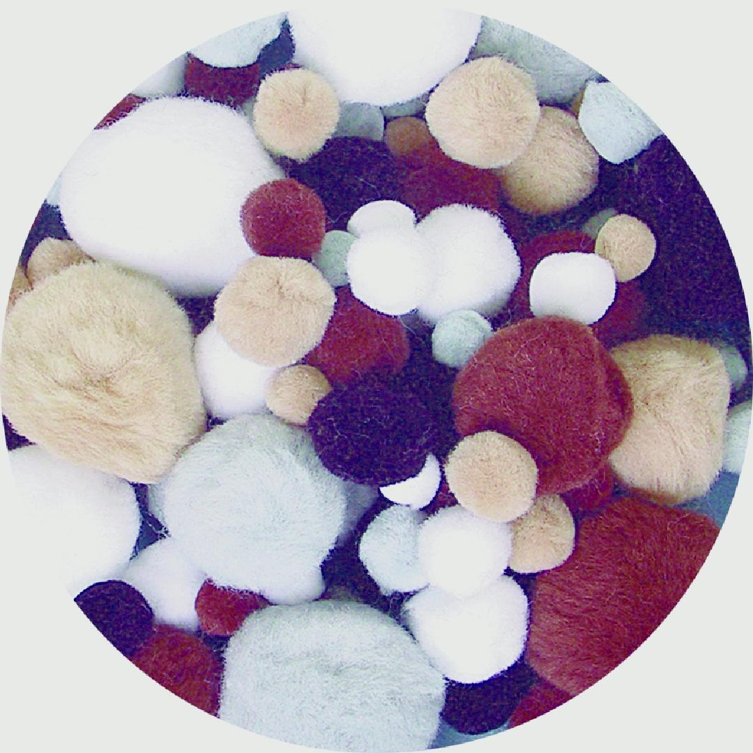 Animal Colour Pom Poms (300pcs)