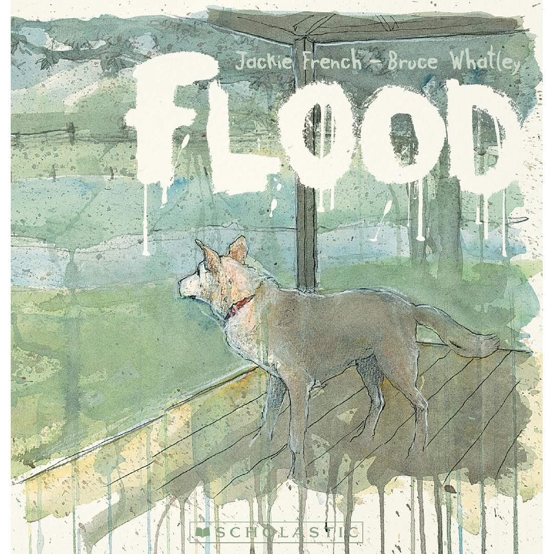 Flood Picture Book