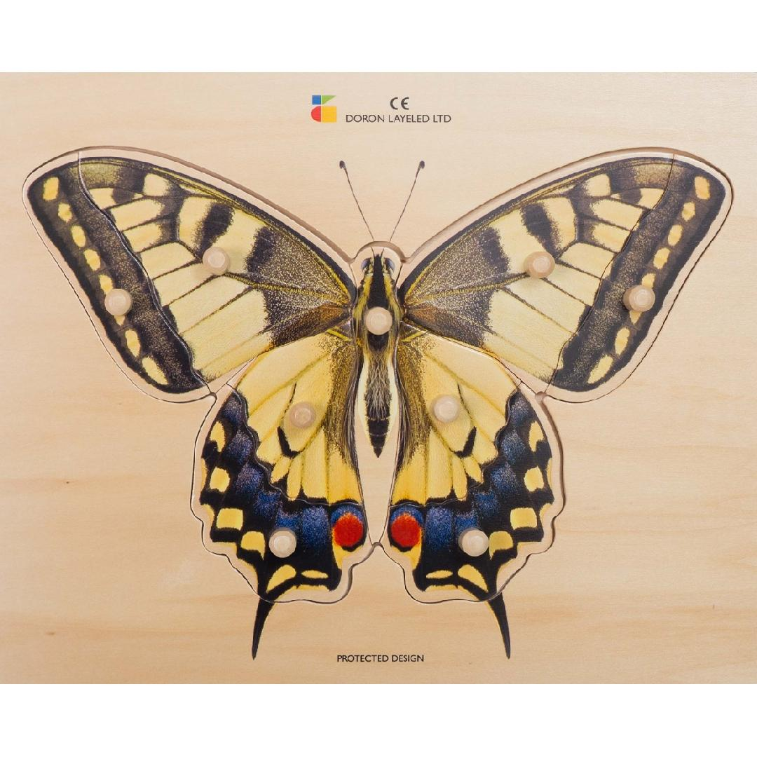 Real Butterfly Peg Puzzle