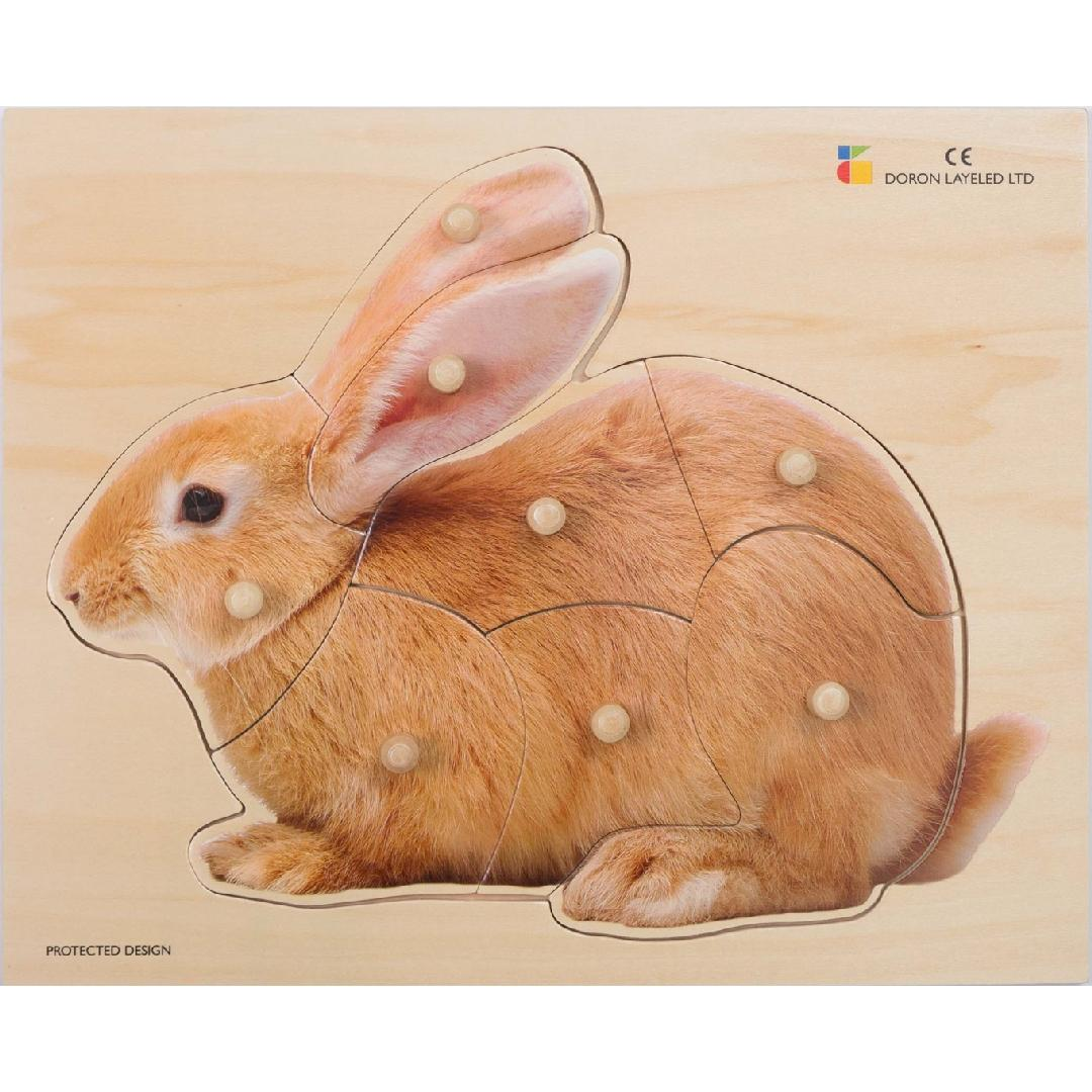 Real Bunny Peg Puzzle