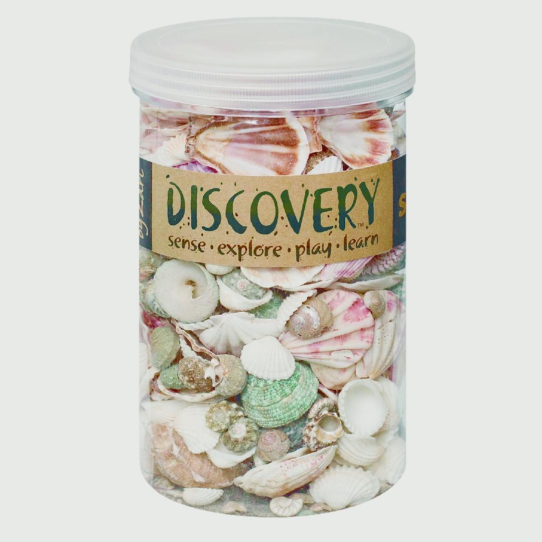 Tub of Shells (1kg)