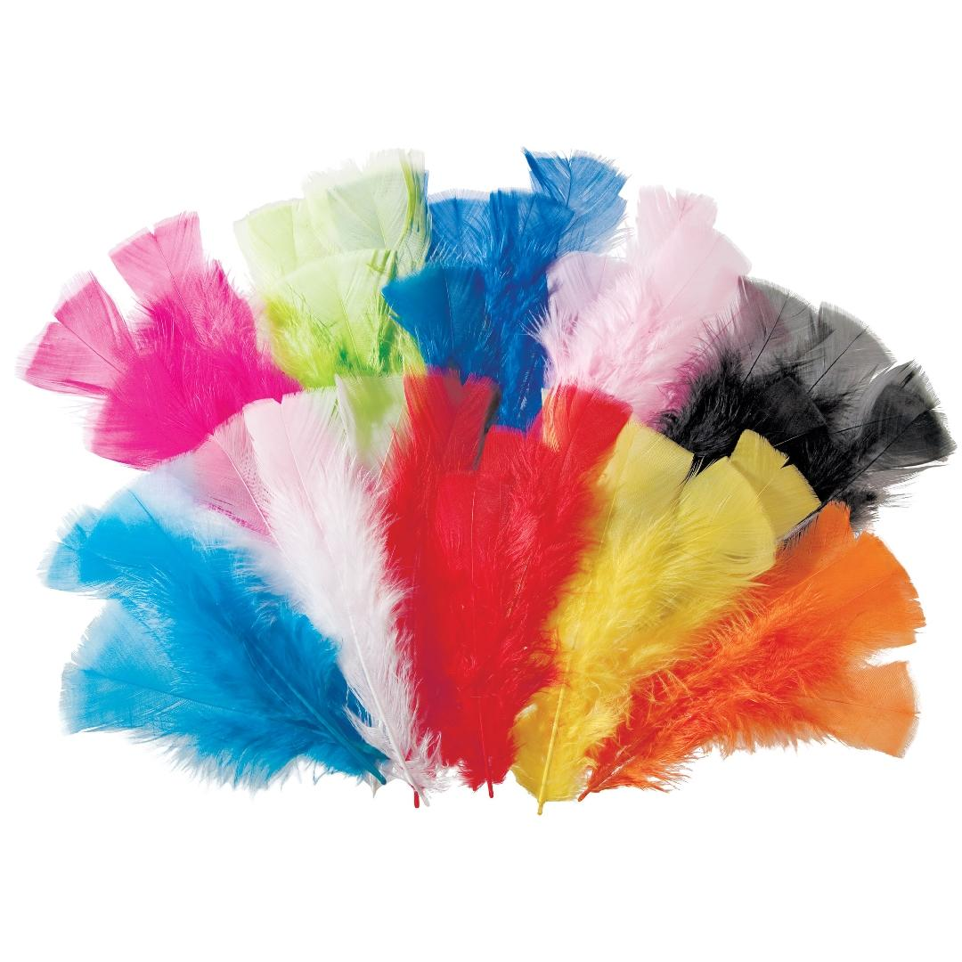 Assorted Feathers (60g)