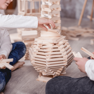 lindenwood-eco-deindly-educative-toy-ekohunters