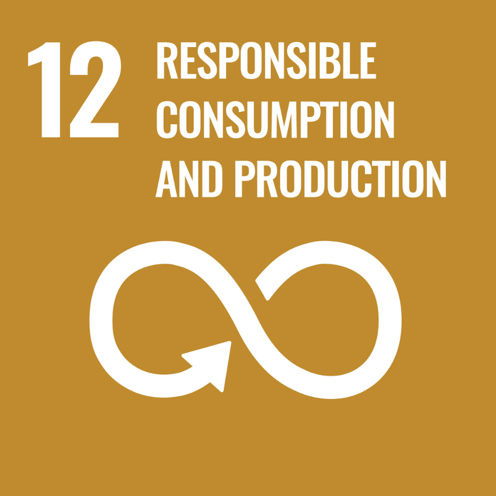responsible production and consumption