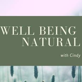 Logo de la société Well-being Natural with Cindy
