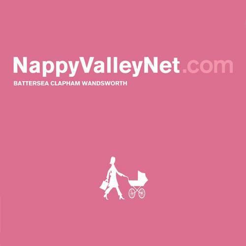Logo de la société NappyValleyNet
