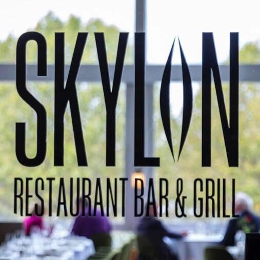 Logo de la société Skylon