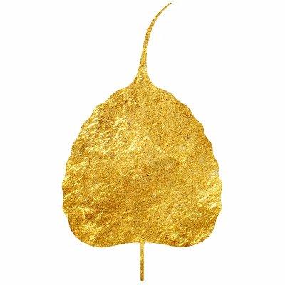 Logo de la société Cinnamon Club