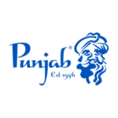 Logo de la société Punjab