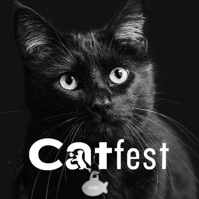 Logo de la société Catfest