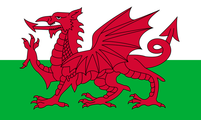 The Welsh flag represents a red dragon on a white and green background.
