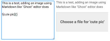 Image upload placeholder