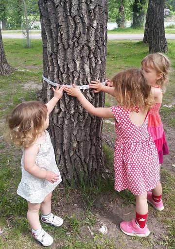 Best Outdoor Educational Activity - Learn About Trees