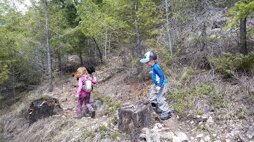 Keep hiking fun for toddlers, bring lots of snacks and water and a toddler friend if you can