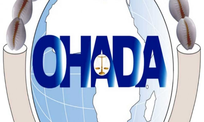 Magistrates of courts of appeal and commercial courts called to appropriate the OHADA rights