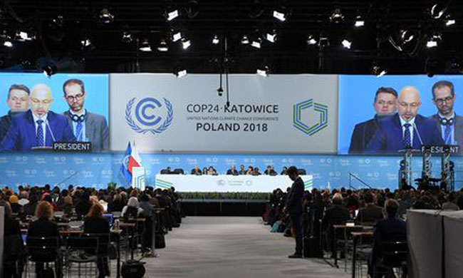 The DRC's contribution to the Cop 24 report in Katowice, Poland