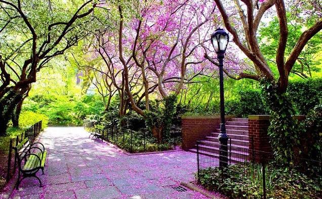 central park conservatory garden - Central Park Conservatory Garden