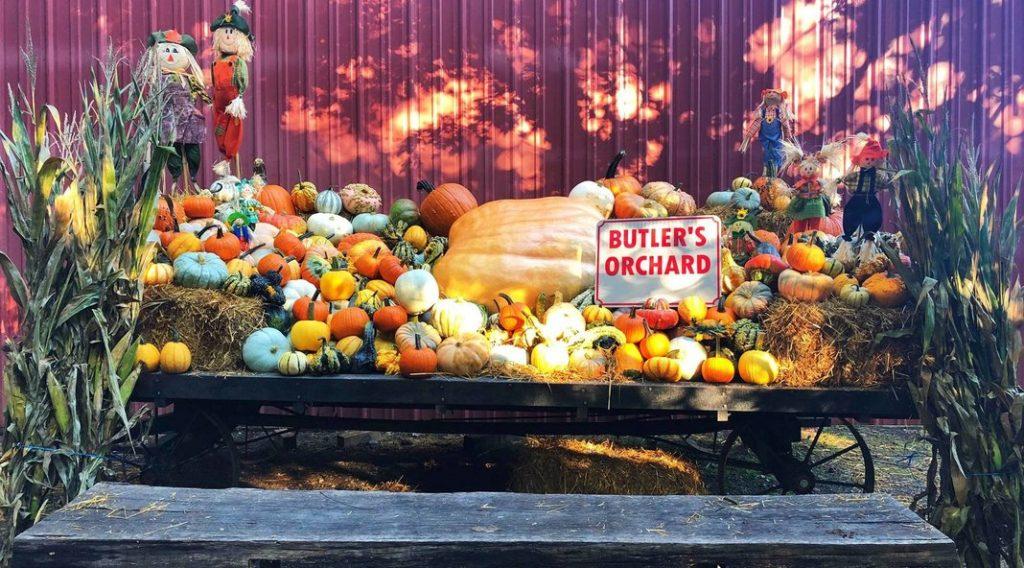 Une ferme décorée pour Halloween