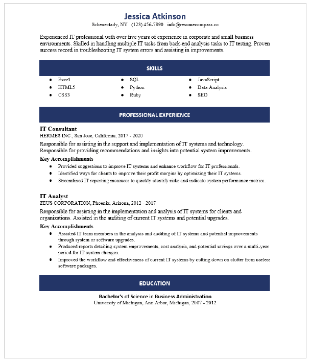 It Director Resume Sample Resumecompass