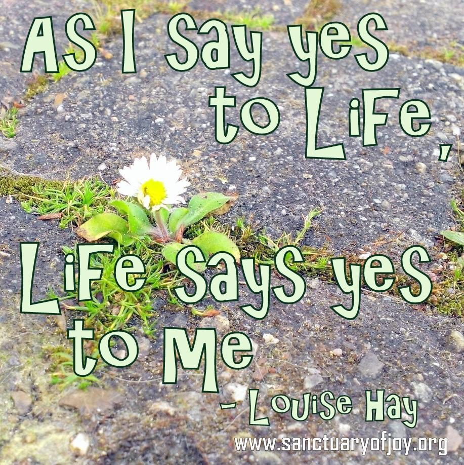 As I say yes to life, life says yes to me