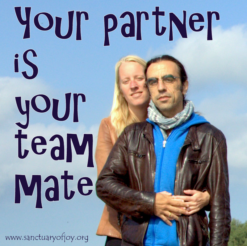 Your partner is your team mate