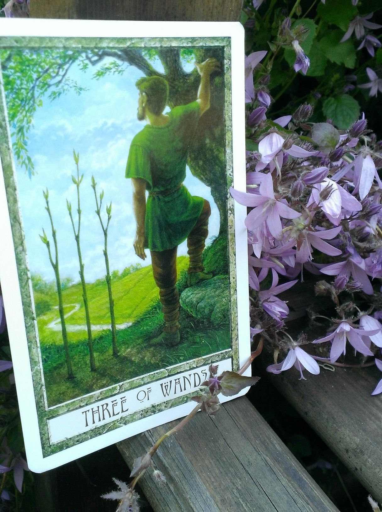 Three of Wands - DruidCraft tarot