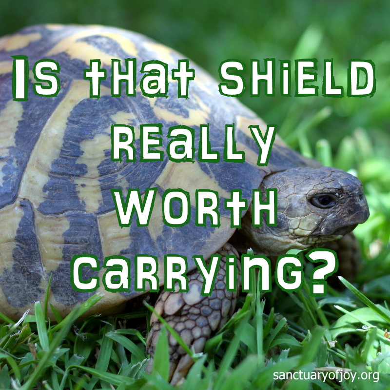 Is that shield really worth carrying?