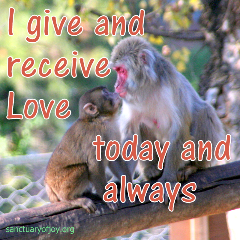Give and receive Love everyday