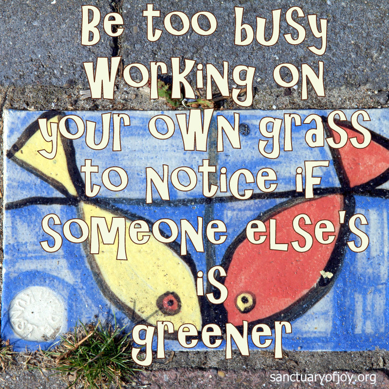 Be too busy working on your own grass to notice if someone else's is greener