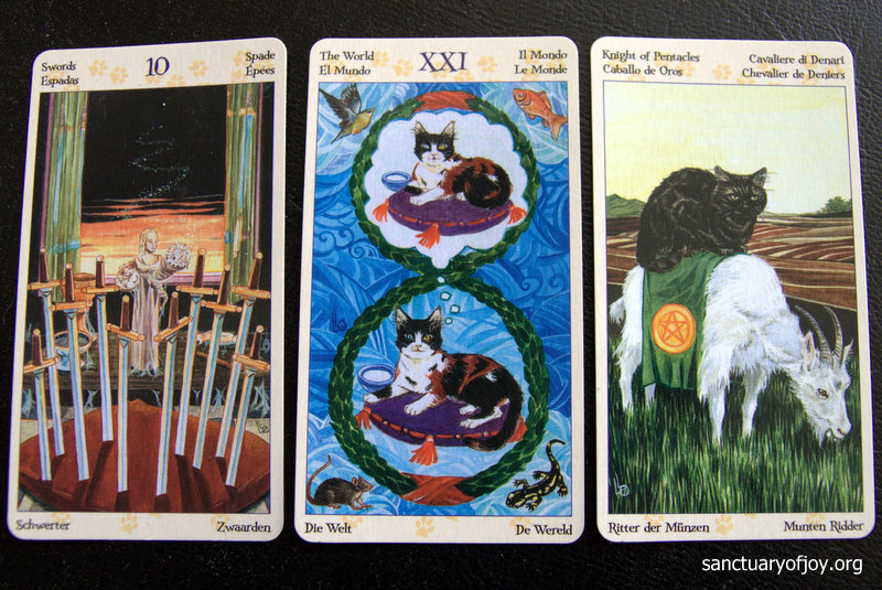 Tarot card reading for November 2016