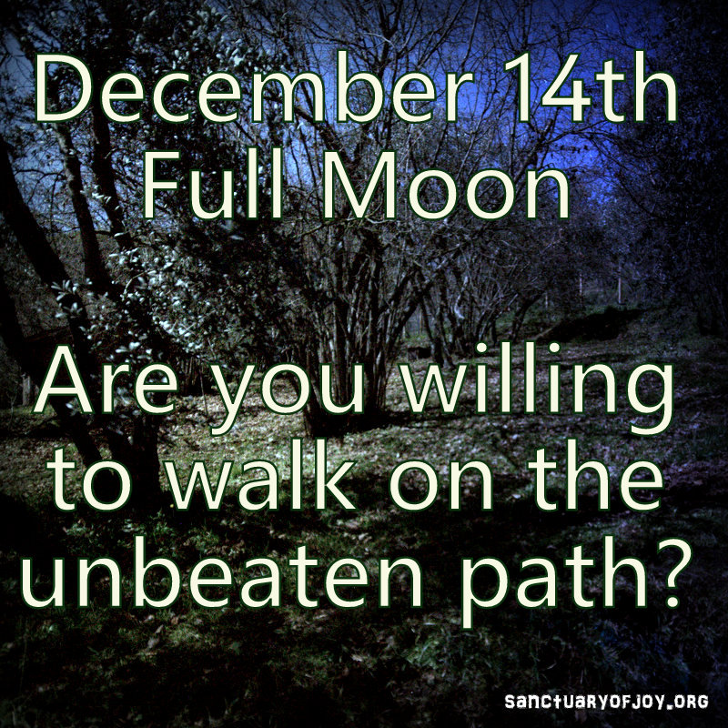 December 14th's Full Moon: an invite to walk on the unbeated path
