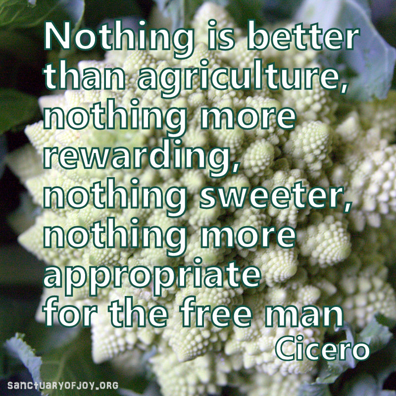 Nothing is better than agriculture