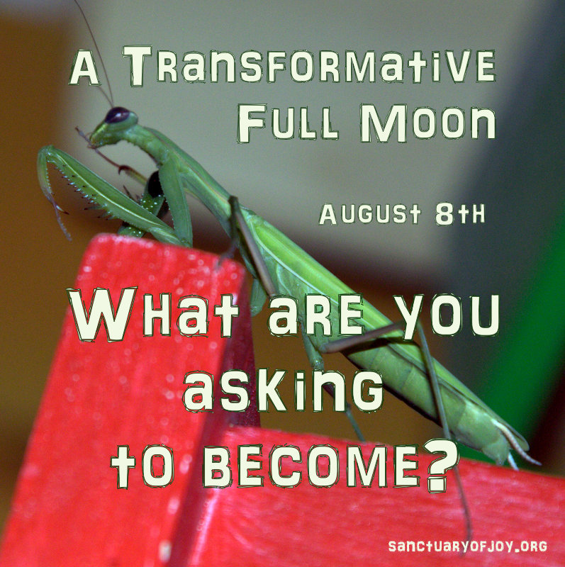 A transformative Full Moon - What are you asking to become?