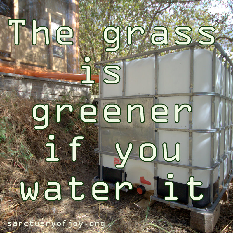 The grass is greener (if you water it)