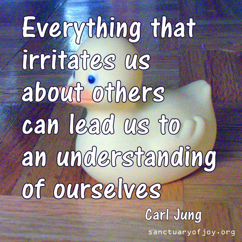 Everything that irritates us about others can lead us to an understanding of ourselves