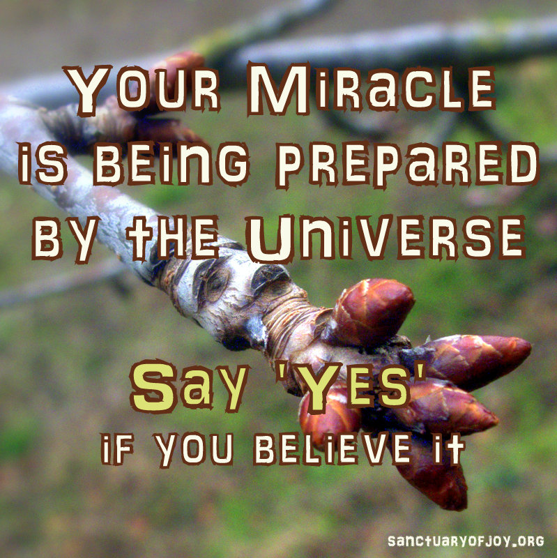 Your Miracle is being prepared