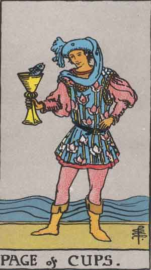 Page of Cups / Water / Hearts