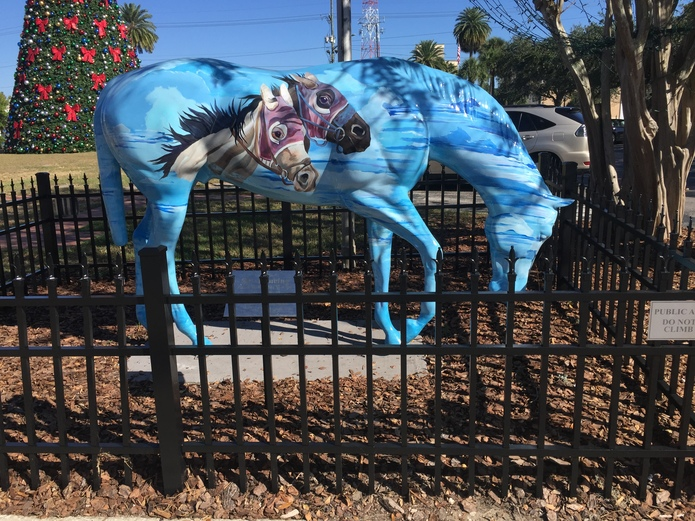See Something Special in Ocala, Florida, United States