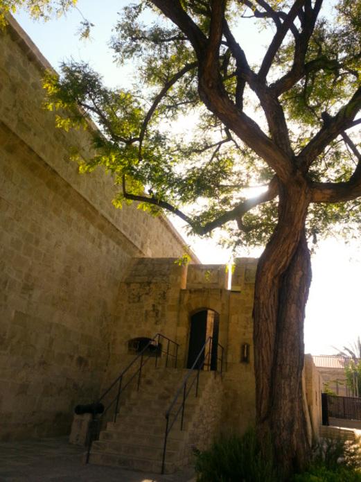 Inspiration in Limassol, Cyprus